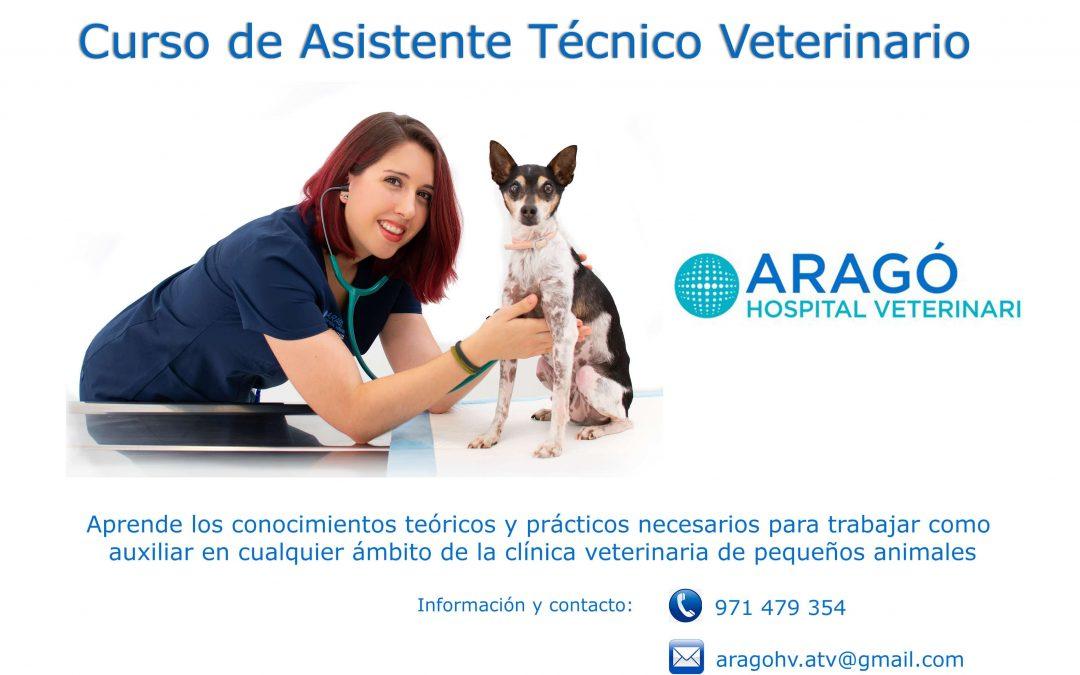 Curso de asistente técnico veterinario